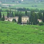 Lavagno (VR) Villa Contarini