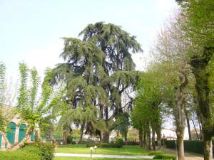 Pressana-Parco Villa Gaudio