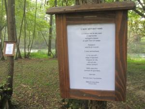 Il Bosco in Poesia