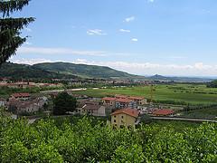 Monte Gardon