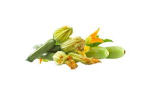 1-zucchine-003
