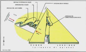 """""""Schema dei sollevamenti geologici che hanno modellato il Monte Baldo e i Monti Lessini"""" (da G. Corrà e B.Pighi, 1996)"""